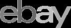 ebay internet auction e-commerce logo - Graphic Regime client