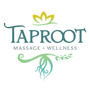 Graphic Regime Chris Mark Creative Director Taproot Massage & Wellness logo design